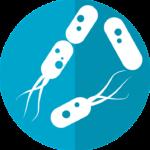 細菌類最強の菌に対する次亜塩素酸水の効果について