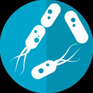 細菌に対して次亜塩素酸水